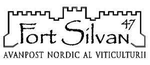 fort_silvan